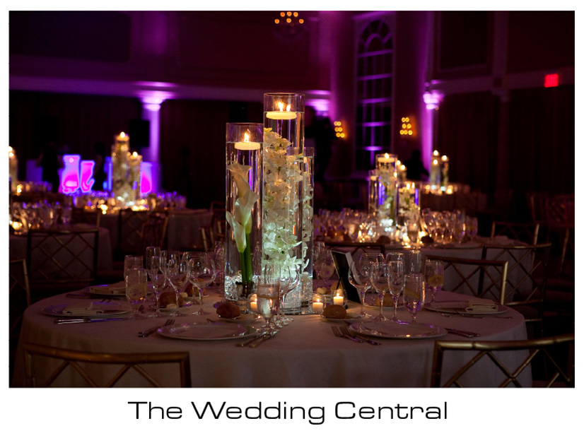 The Palace at Somerset Park Wedding Photos