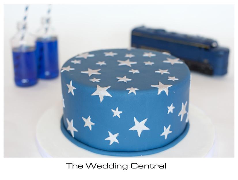 New Jersey Wedding Photographers Nj Ny Photography Mod Cakery