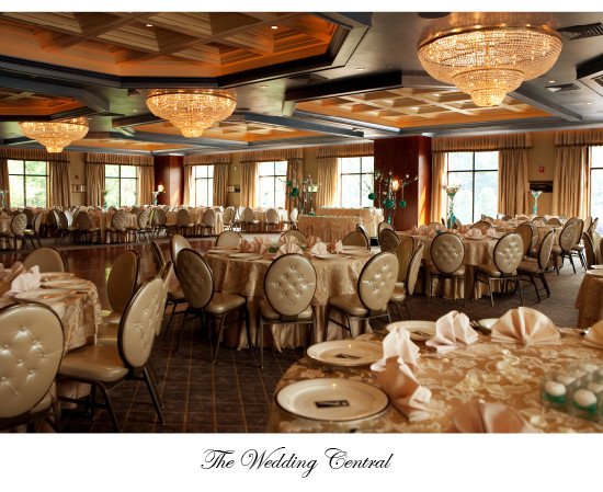The Imperia Somerset New Jersey Indian Wedding Photography
