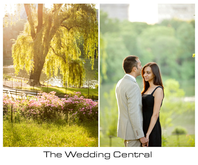 New York Engagement Photographer - Couple standing willow tree