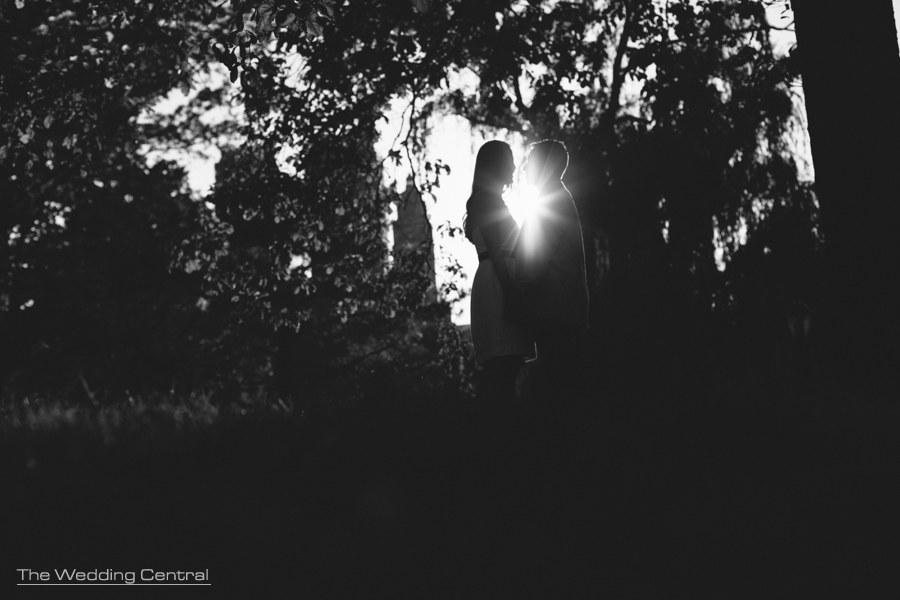 Contemporary New York Engagement Photography - new york engagement photographer